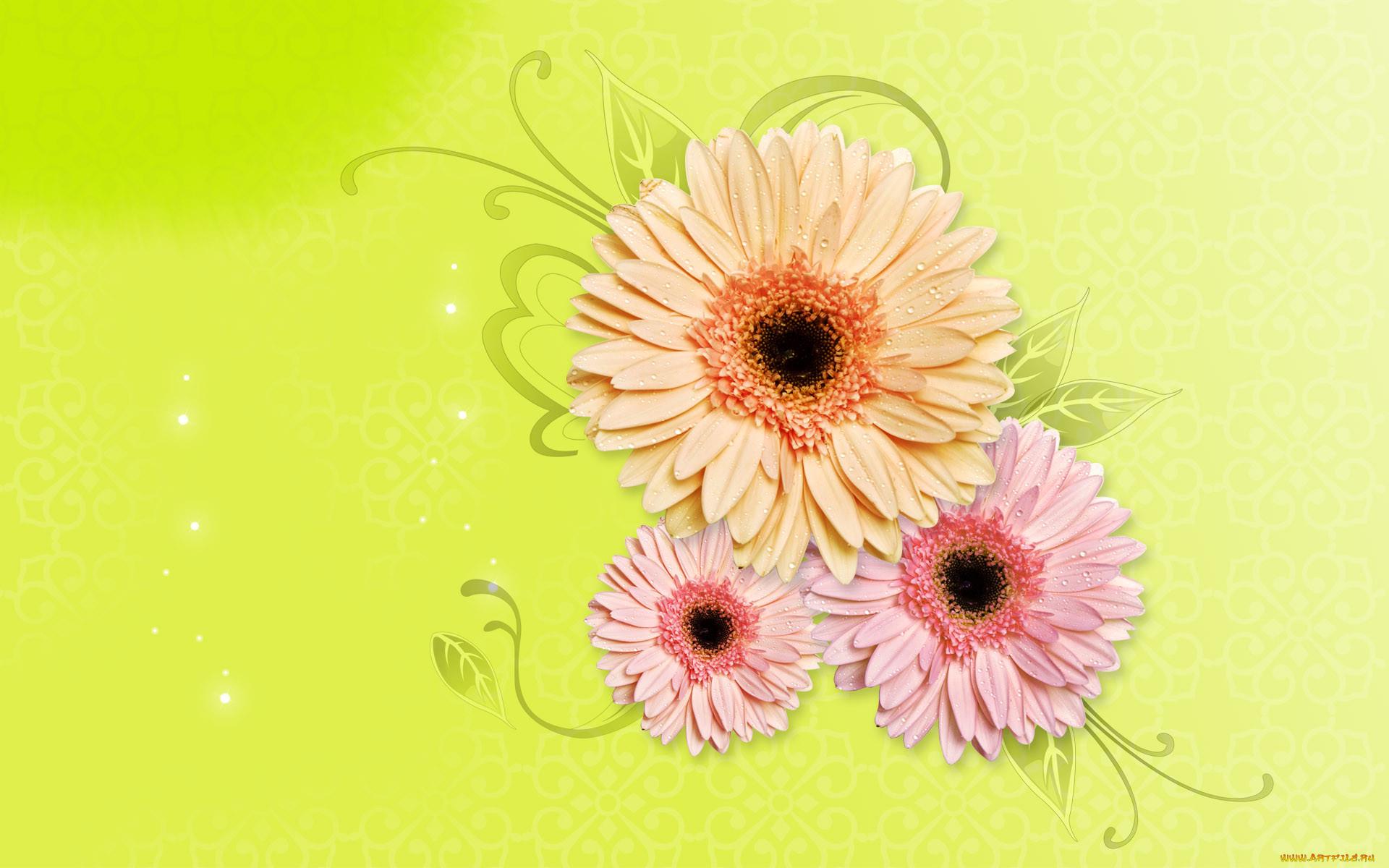 Цветочек картинка на открытку